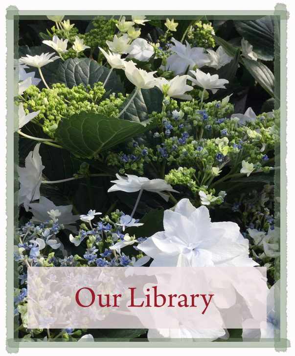 plantlibrary2