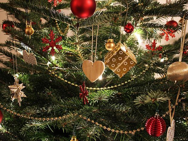 Christmas Tree Rules 5 Things To Know Faddegon S Nursery Inc