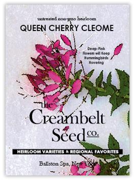 Creambelt Seed Co.
