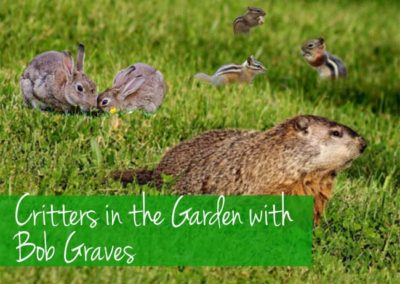 April 28th, 2018 – Critters in the Garden with Bob Graves