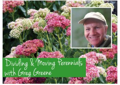 April 14th, 2018 – Dividing & Moving Perennials with Greg Greene