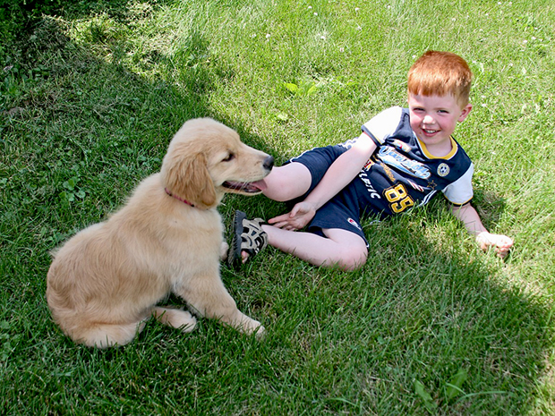 Organic Solutions to Protect Kids & Pets