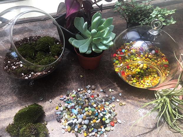 August 11th – Mini Glass Garden Workshop